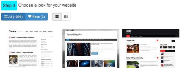 Step #3: Choose website theme