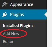 Add a new plugin in WordPress