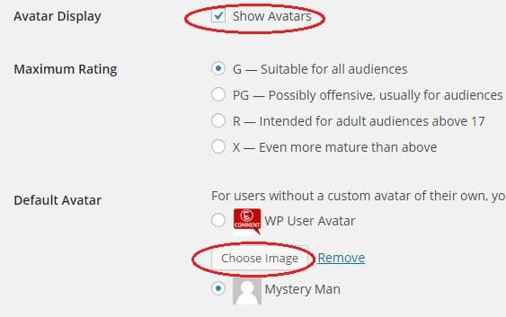 Here you can select Avatar settings