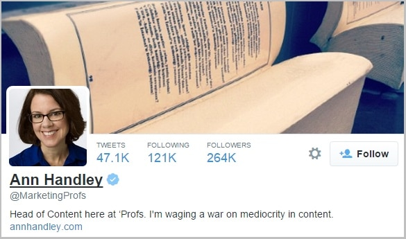 Ann Handley twitter bio