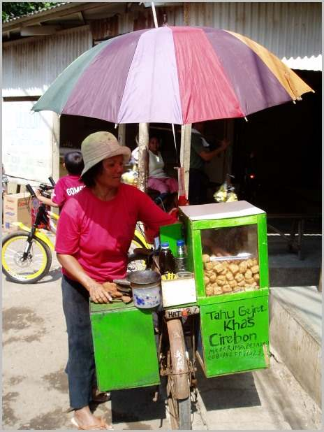 Street vendor selling fried tofu.