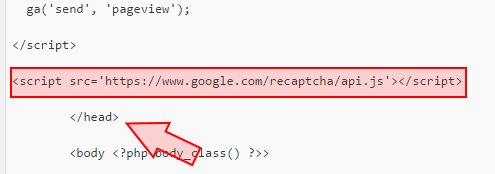 Paste the recaptcha snippet here