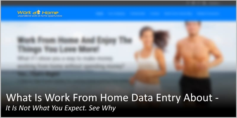 What Is Work From Home Data Entry About – Not What You Expect. See Why